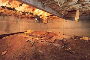 A clean, empty basement in  in La Grange.
