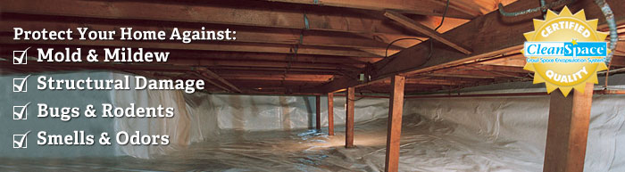 We are the Georgia Crawl Space Experts!